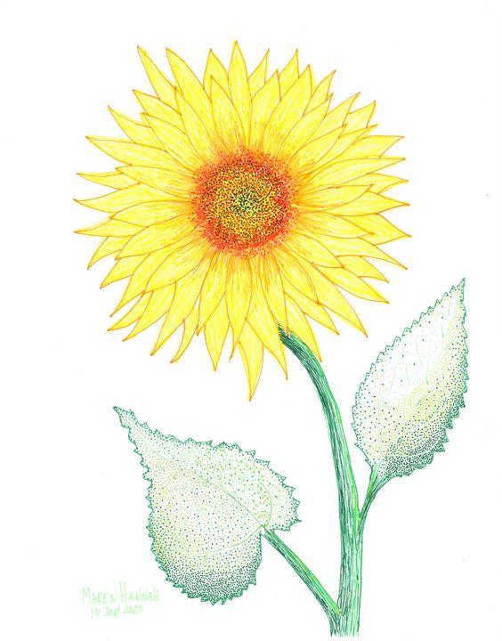Sunflower - Maren Hannah