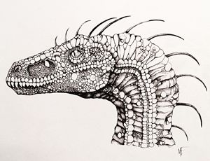 Lizard King - MF