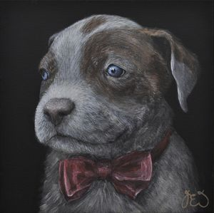 CUTE DAPPER PUPPY WITH BOWTIE - James Ineson