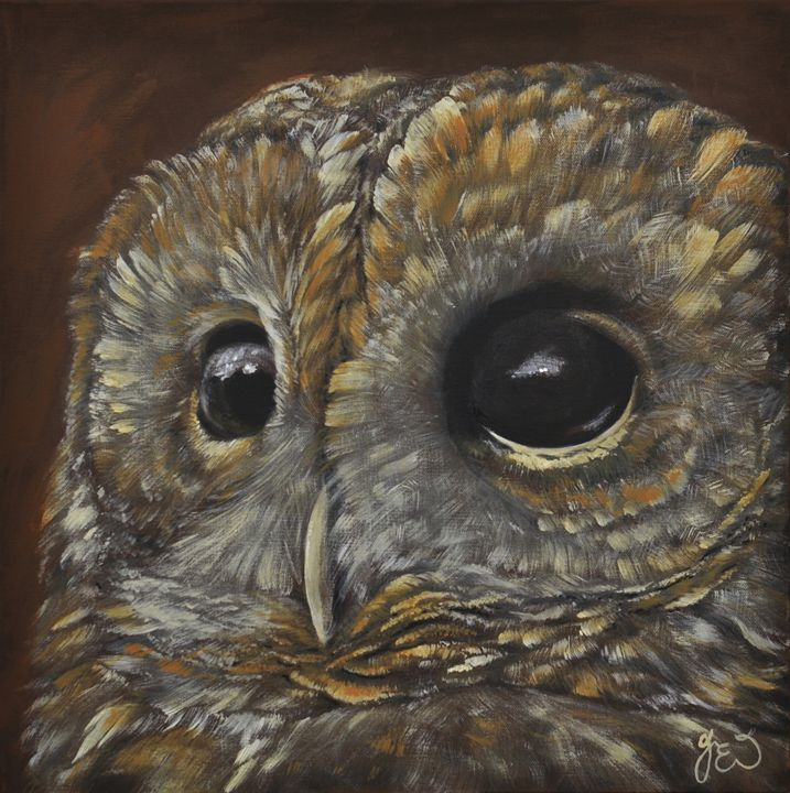 The wise brown tawny owl - James Ineson