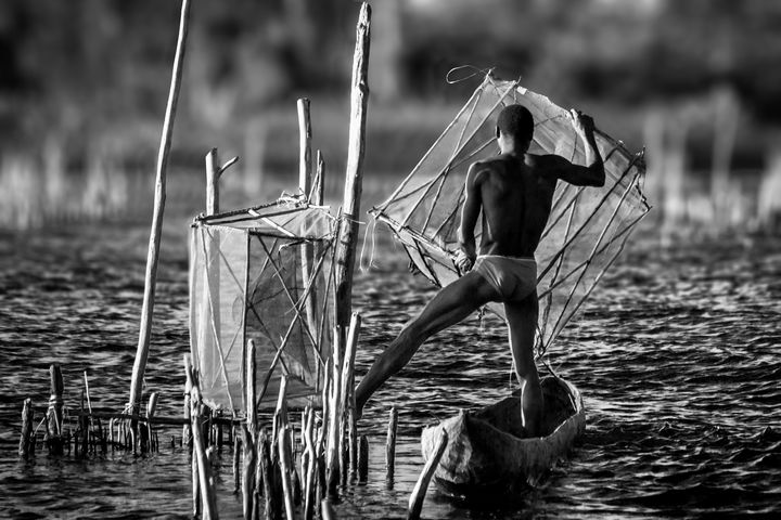 Fish trapping - Pierre-Yves Babelon