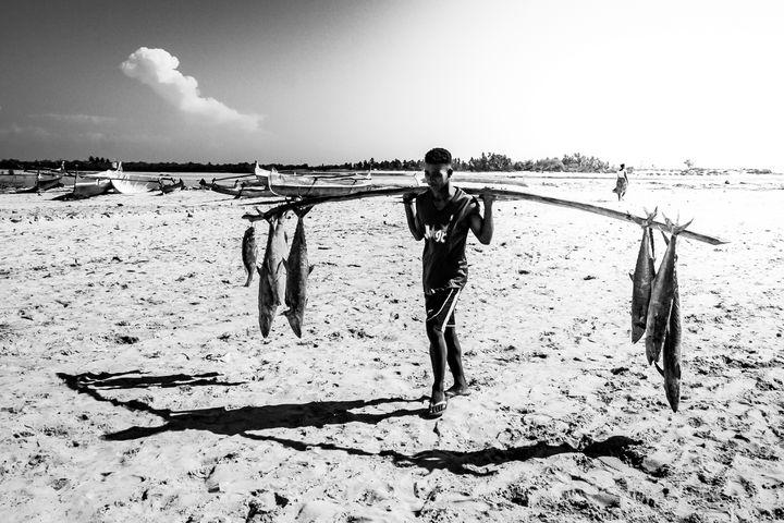 Back fishing - Pierre-Yves Babelon