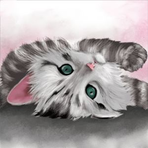 Cute Kitten Art