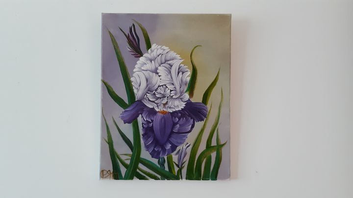 Purple iris flower - Affordable oil paintings
