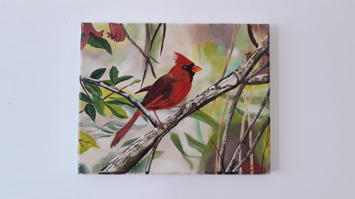 Cardinal on a branch - Affordable oil paintings