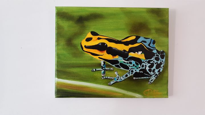 Poisonous frog - Affordable oil paintings