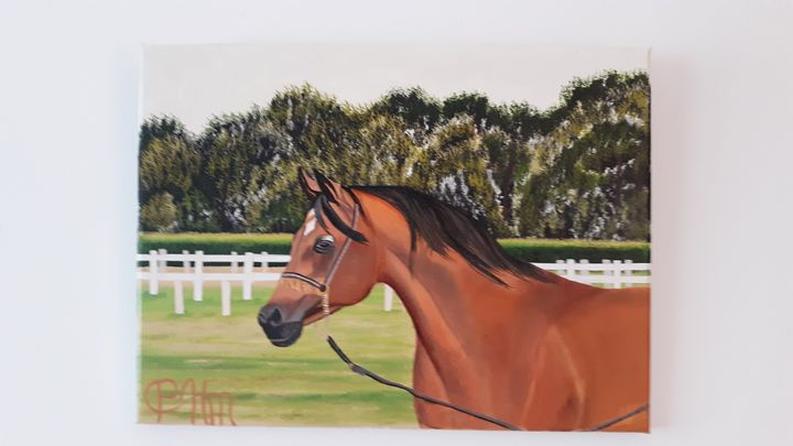 Brown racehorse - Affordable oil paintings