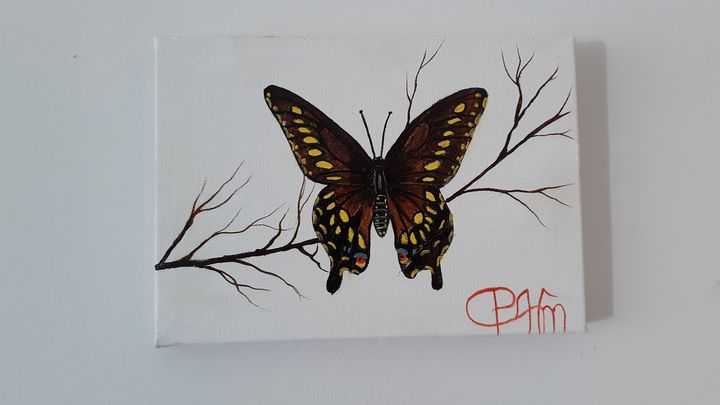 Black swallowtail butterfly - Affordable oil paintings