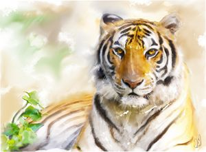 tiger - Jovan watercolors