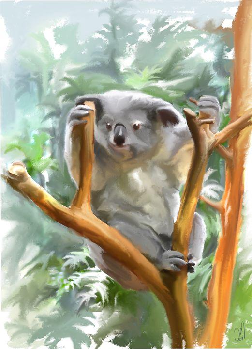 Koala - Jovan watercolors