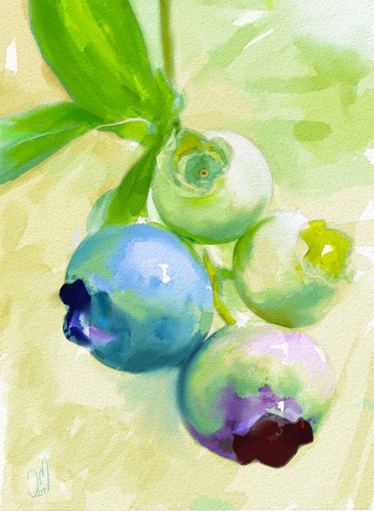Blueberries - Jovan watercolors