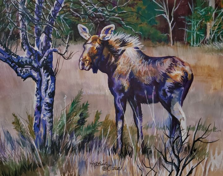 The Moose and the Apple Tree - NancyJBailey