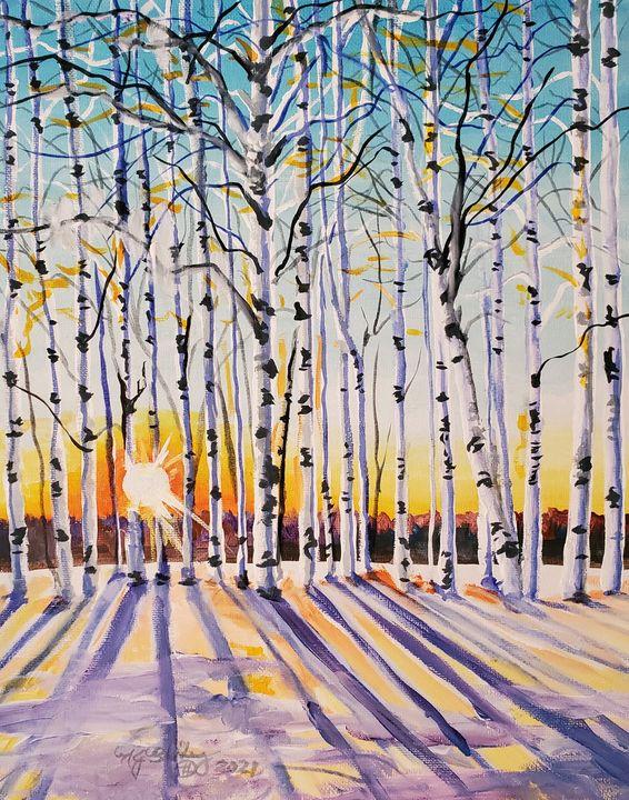 Sunset Birches - NancyJBailey