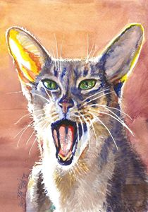 Abyssinian Cat Shout Watercolor