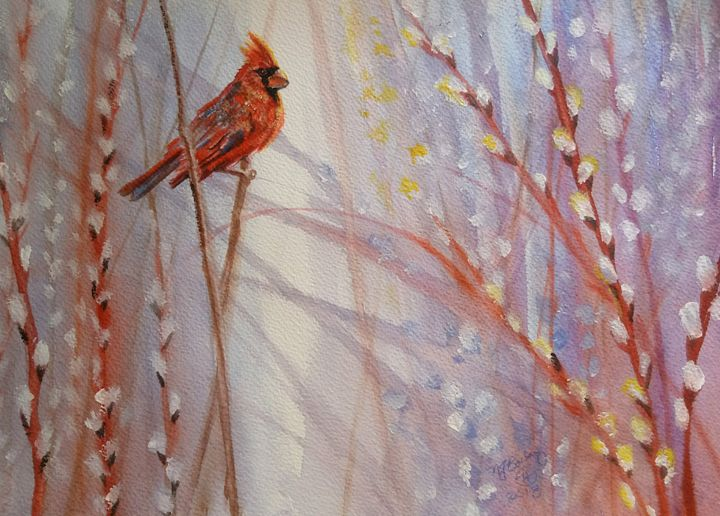 Cardinal in Pussy Willow - NancyJBailey