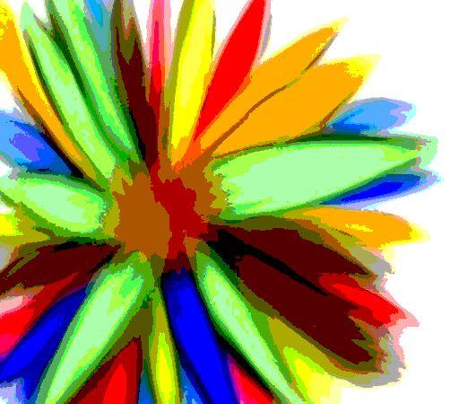 Rainbow Flower - SA Sarah Ann