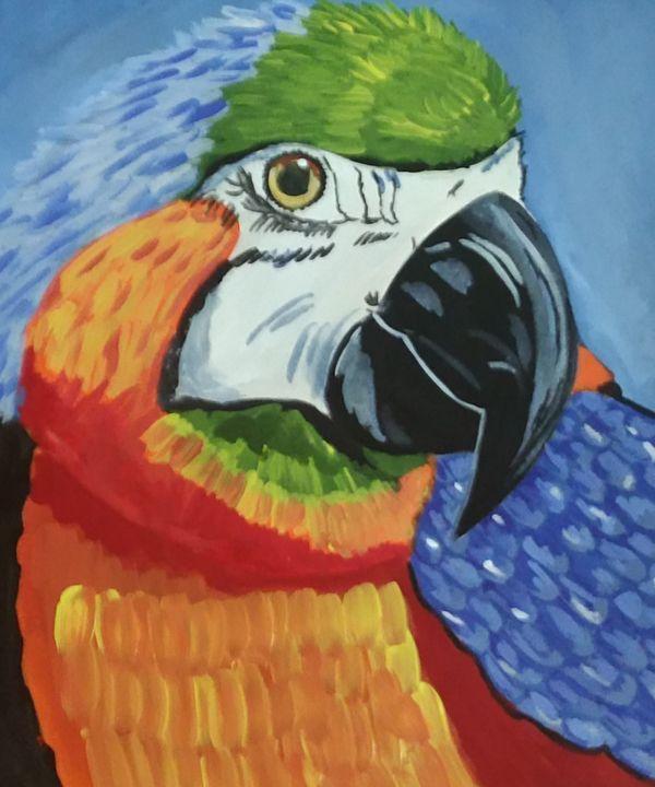 Parrot -  Kotti.priya