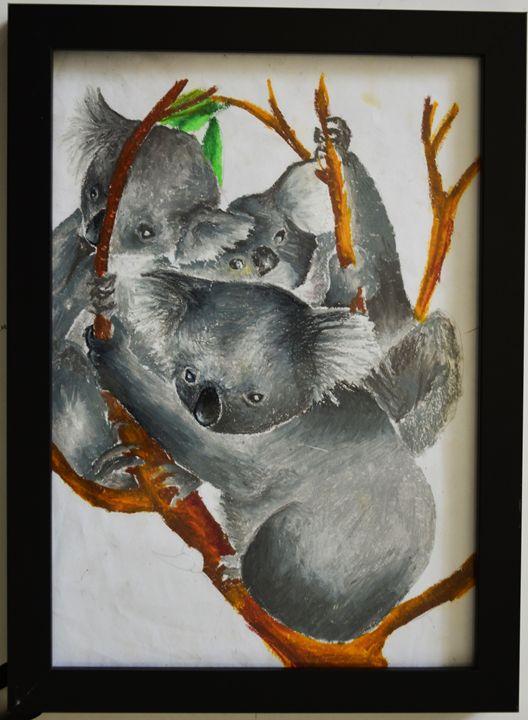 Koalas - ArtMind