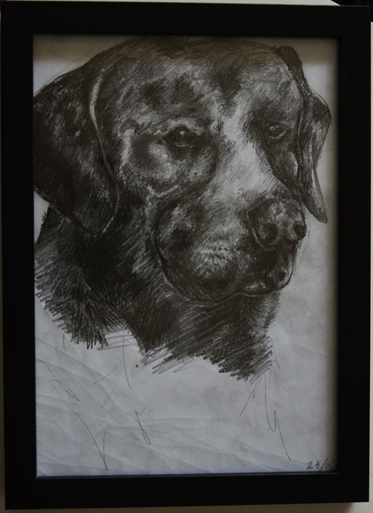 Dog - ArtMind