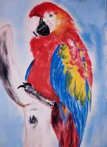 Guacamaya Tricolor - Art by Jancel