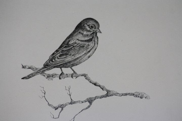 Sparrow - syed akheel art