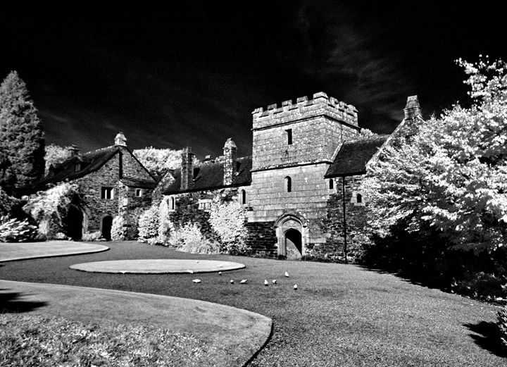 Cotehele House, Cornwall - Brian Aldridge