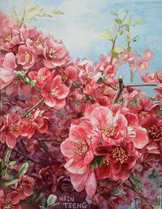 Spring - Tseng Hsin
