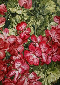 Flower Shot - Tseng Hsin