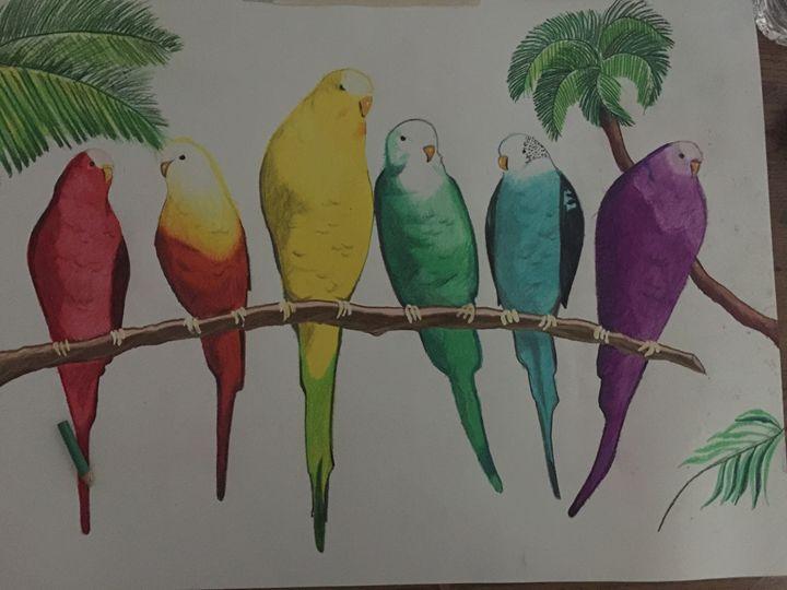 Rainbow parakeets - Cereste Artworx