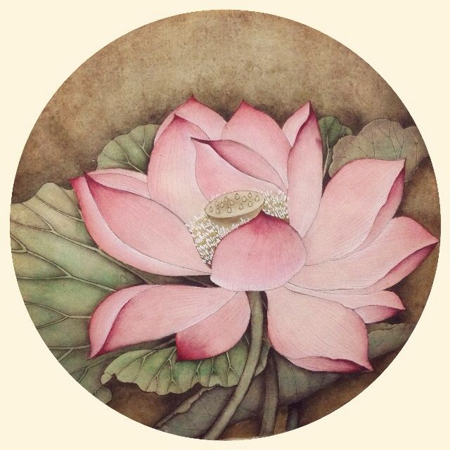 Lotus in the summer - Icy.Liu's Chinese Painting