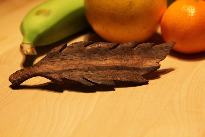 Natural leaf Hairpin - Tristan Bisaillon-Lefebvre