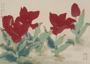 Spring: Tulip