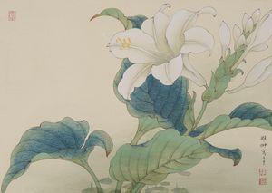 Summer: Hostas Flower