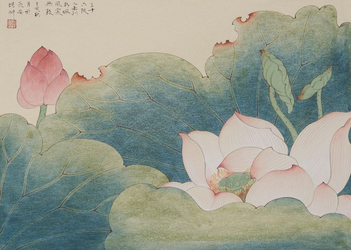 Summer: Lotus - Salty light
