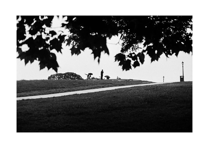 0085_London park - Nedim Bajraktarevic