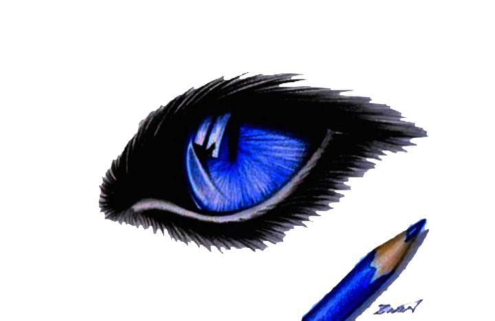 Drawing  Cat Eye - Alan Zinn