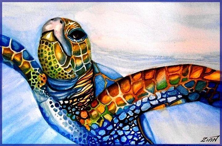 Sea Turtle - Alan Zinn