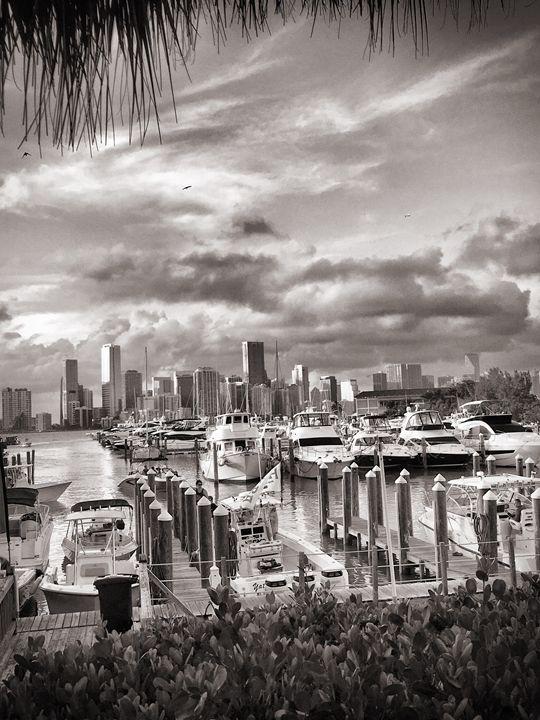 Miami - 1 - Andrew Sphar