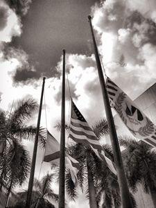 Florida Half Mast