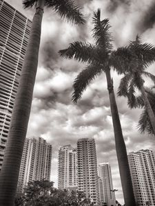 Brickell Key 1