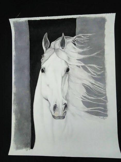 Wind Blown Horse Portrait - TriniHorizons