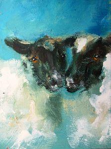 loving irish sheep on canvas