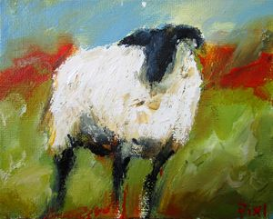 sheep by the lakes of connemara
