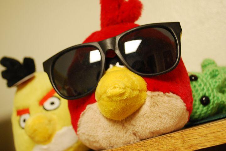 Classy Birdy - Amanda Maze