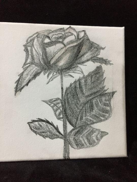 Rose - Jade Martin