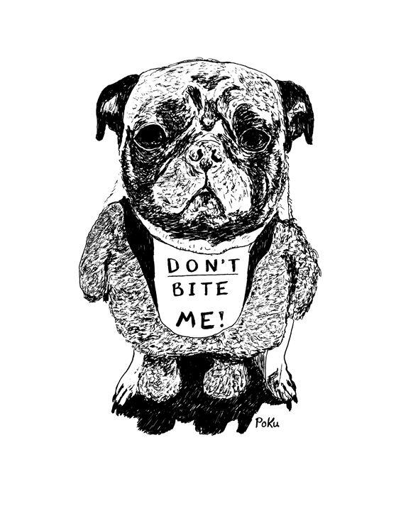 Don't Bite Me (pug) - Po Ku