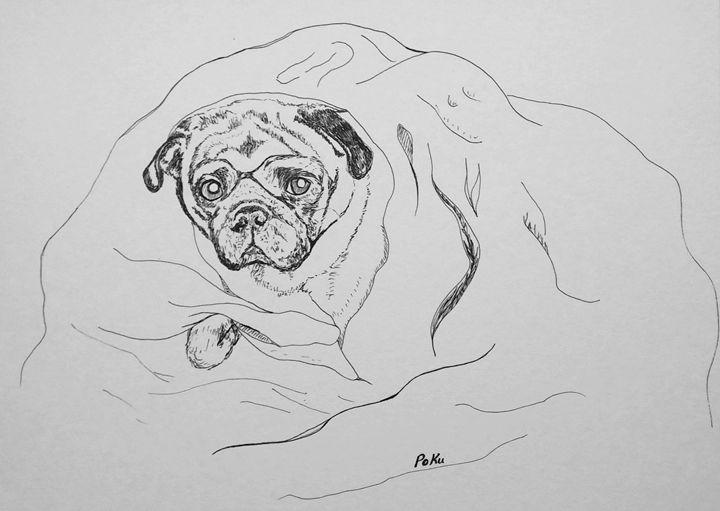 Pug in a blanket - Po Ku
