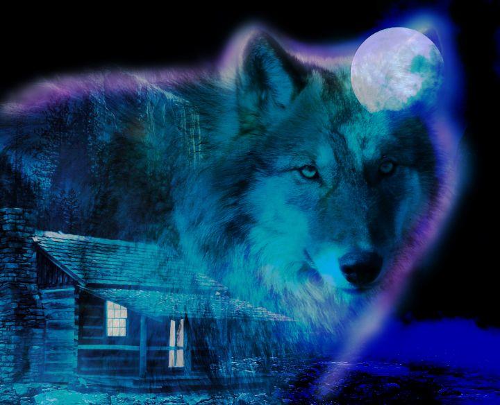 Alaskan Wolf - Christianitythenandnow.net