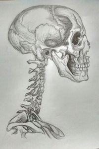 Human Deconstruction