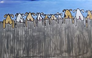 10 Puppies Watching